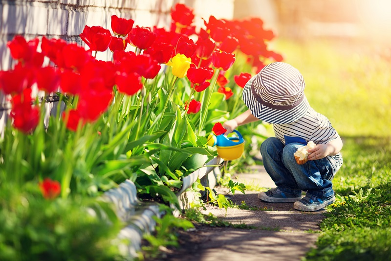 Ein Kind freut sich über die blühenden Tulpen im Garten. Foto: © candy1812 - stock.adobe.com